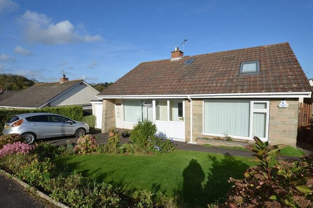 Thumbnail Bungalow for sale in Brunel Road, Paignton