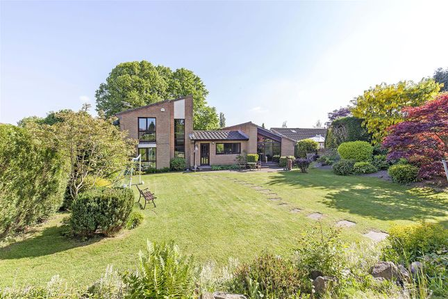 Thumbnail Detached house for sale in Oakfield Avenue, Brampton, Chesterfield