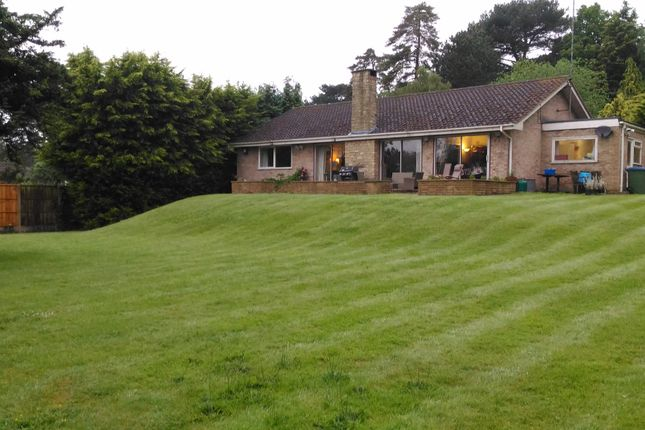 Thumbnail Bungalow for sale in Courtleas, Cobham
