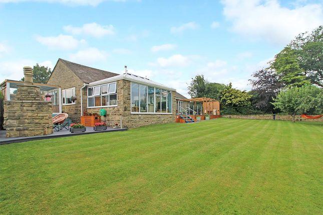Thumbnail Detached bungalow for sale in High View, Burnt Yates, Harrogate