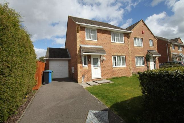 Thumbnail Detached house to rent in Bishop Close, Poole