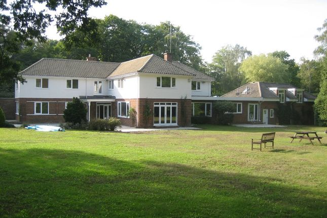 Thumbnail Detached house to rent in East Drive, Wentworth, Virginia Water