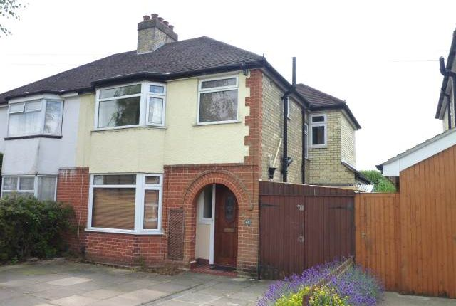 Thumbnail Property to rent in Perne Avenue, Cambridge, Cambridgeshire