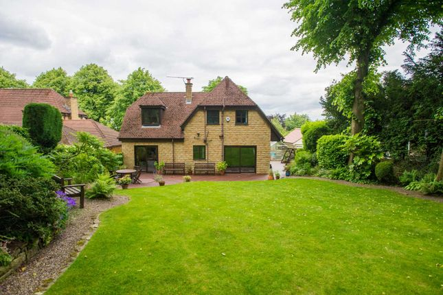 Thumbnail Detached house for sale in Brincliffe Crescent, Brincliffe, Sheffield