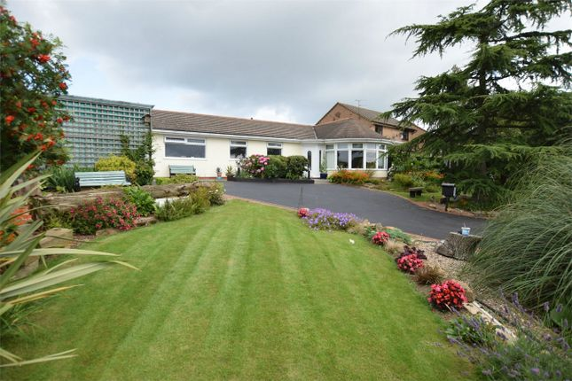 Thumbnail Detached bungalow for sale in Broadway, Swanwick, Alfreton, Derbyshire