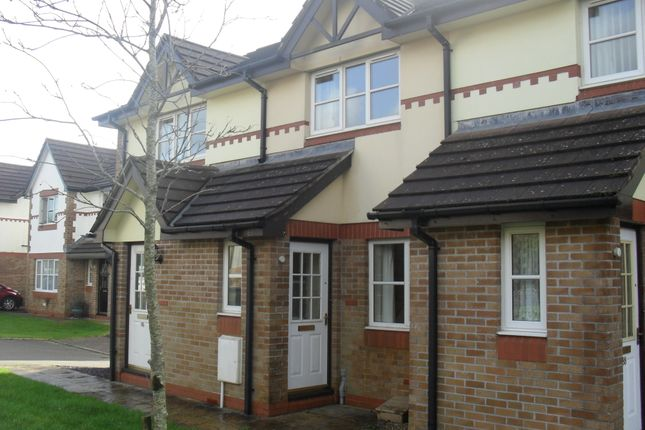 Thumbnail Terraced house to rent in Century Close, St. Austell