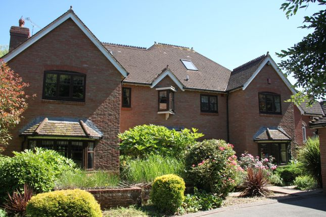 Thumbnail Detached house to rent in Lethbridge Park, Bishops Lydeard, Taunton