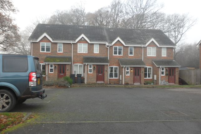 Thumbnail Terraced house to rent in Cuckmere Close, Hailsham