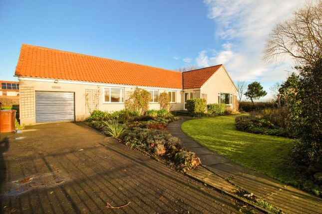 Thumbnail Bungalow to rent in Athelstaneford, North Berwick