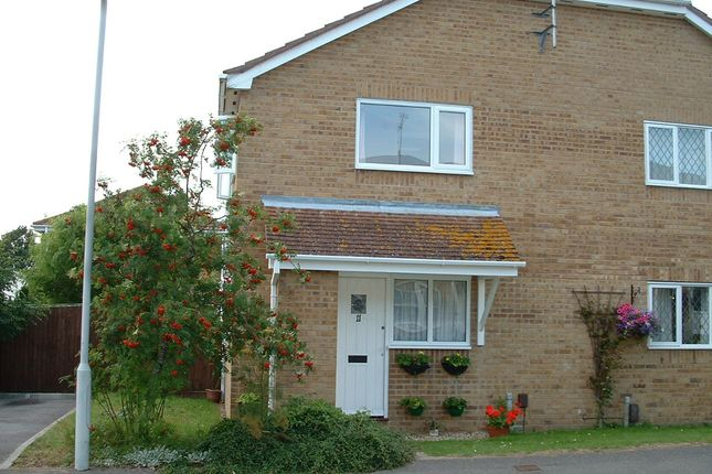 Thumbnail Mews house to rent in Oakley Gardens, Upton