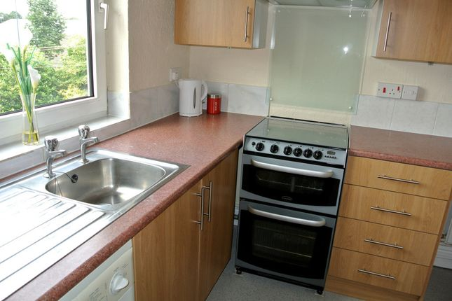 Thumbnail Terraced house to rent in Gerard Street North, Derby