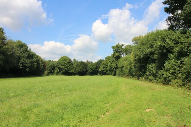 Thumbnail Land for sale in Hawkhurst Lane, Waldron