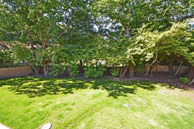 Garden of Thakeham Road, Storrington, Pulborough RH20