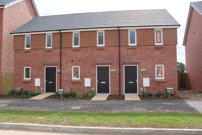 Thumbnail Property to rent in Rush Meadow Road, Cranbrook, Exeter