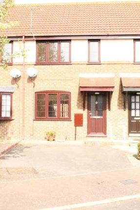 Thumbnail Terraced house to rent in Keeble Park, Maldon