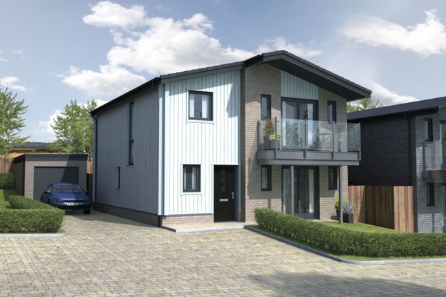 Thumbnail Detached house for sale in Cove Way, Amble, Northumberland