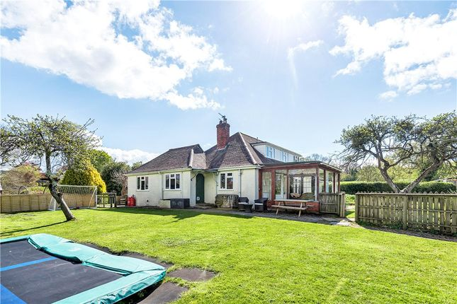 Thumbnail Bungalow for sale in Parsonage Street, Fontmell Magna, Shaftesbury, Dorset