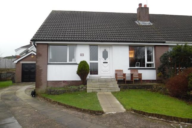 Thumbnail Semi-detached house to rent in Ravelston Park, Newtownabbey