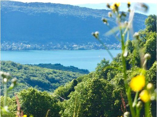 Thumbnail Detached house for sale in Talloires, Haute-Savoie