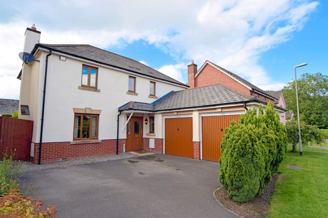 Thumbnail Detached house for sale in Harebell Drive, Willand