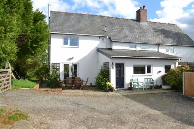 Thumbnail Cottage for sale in Lletty, Bwlch-Y-Ffridd, Newtown, Powys