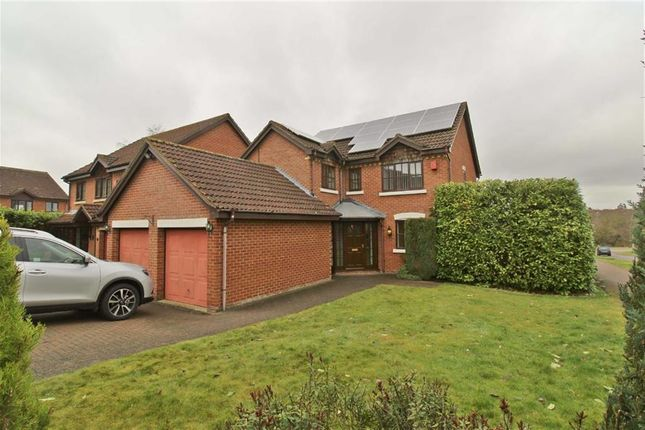 Thumbnail Detached house to rent in Brices Meadow, Shenley Brook End, Milton Keynes
