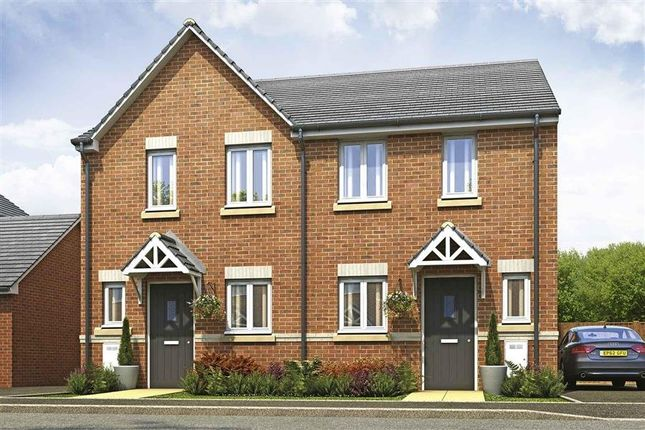 Thumbnail Detached house for sale in Plot 235, Canford, Hele Park