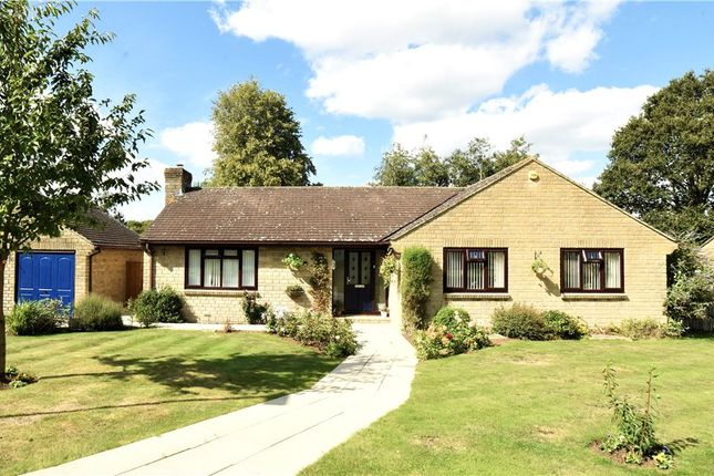 Thumbnail Detached bungalow for sale in Portman Drive, Child Okeford, Blandford Forum, Dorset