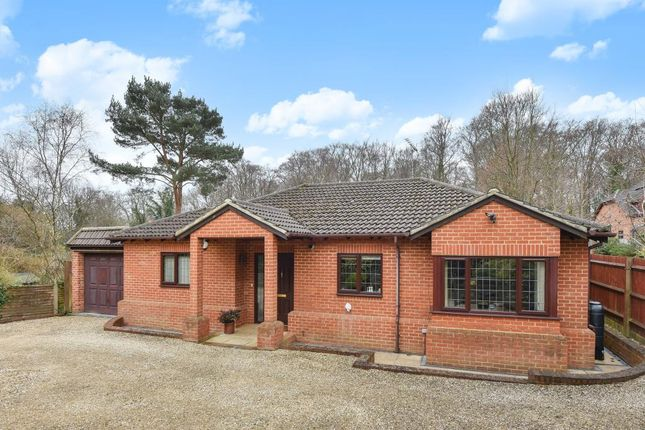 Thumbnail Detached bungalow for sale in Windlesham, Surrey