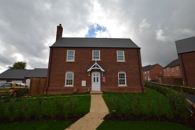 Thumbnail Detached house for sale in John Campbell Close, Flore, Northampton