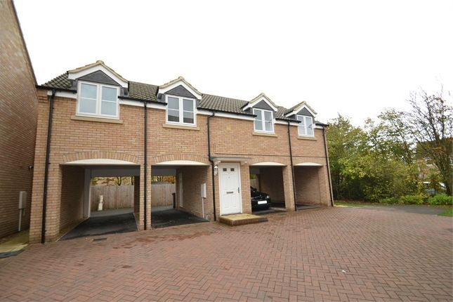 Thumbnail Flat to rent in Perkins Court, Sapley, Huntingdon, Cambridgeshire