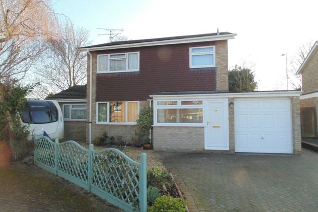Thumbnail Detached house for sale in Marigold Close, Basingstoke