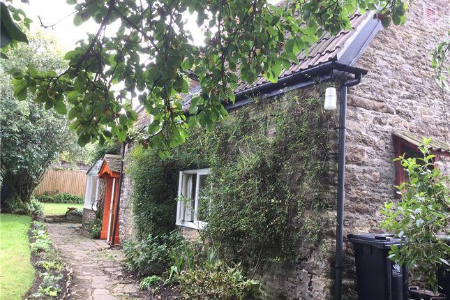 Thumbnail Property to rent in Fifehead Neville, Sturminster Newton