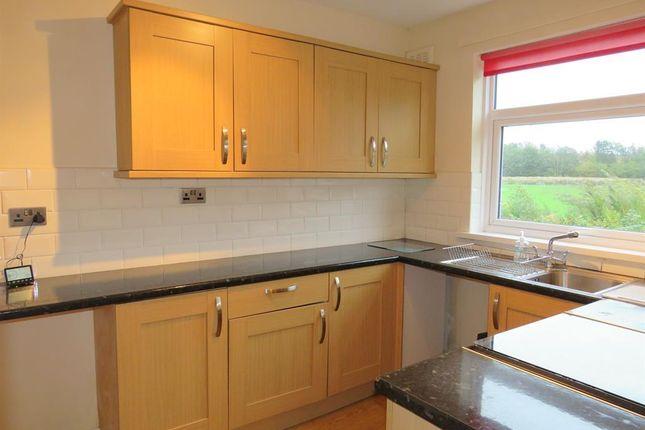 Thumbnail Flat to rent in Thorncroft Gardens, Workington