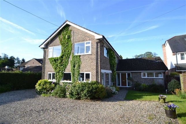 Thumbnail Detached house for sale in Enborne Row, Wash Water, Berkshire