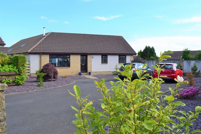 Thumbnail Detached bungalow for sale in 7 Northfield Park, Annan, Dumfries & Galloway