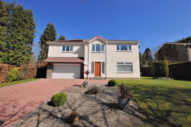 Thumbnail Detached house for sale in Beech Court, Ponteland, Newcastle Upon Tyne