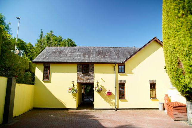 Thumbnail Cottage for sale in Taliesin, Machynlleth