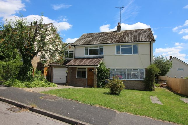Thumbnail Detached house to rent in Sun Hill Crescent, Alresford