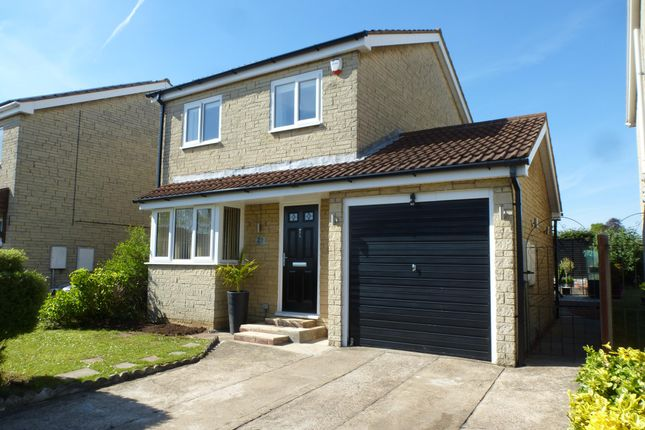 Thumbnail Detached house to rent in Langley Drive, Bottesford, Scunthorpe
