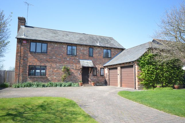 Thumbnail Detached house to rent in Keepers Wood, Chichester