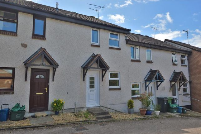 Thumbnail Terraced house to rent in Hazelwood Close, Honiton, Devon
