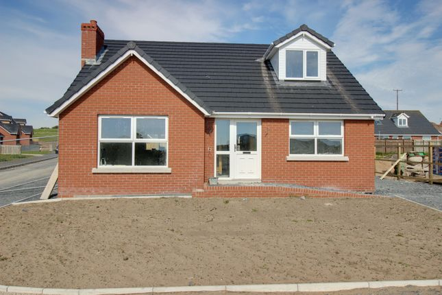 Thumbnail Detached house for sale in Gowland View, Portavogie