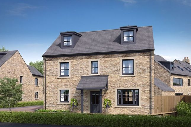 Thumbnail Detached house for sale in Plot 12 Mount Vale Gardens, York