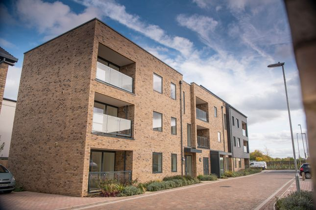 Thumbnail Flat for sale in Overhill Close, Trumpington