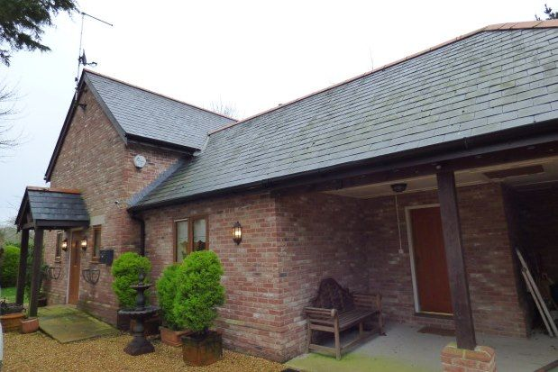 Thumbnail Detached house to rent in Northleigh Lane, Wimborne