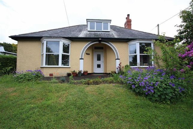 Thumbnail Detached bungalow for sale in Llandre, Bow Street
