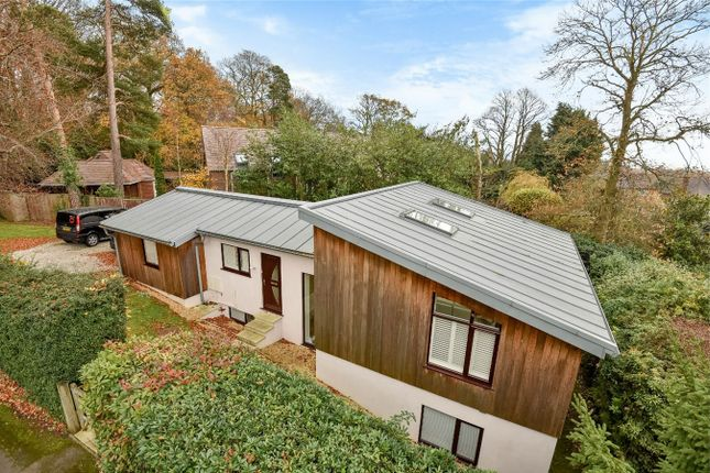 Thumbnail Detached house for sale in Bassett Green Drive, Bassett, Hampshire