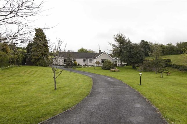 Thumbnail Detached bungalow for sale in Mearne Road, Downpatrick, Co.Down