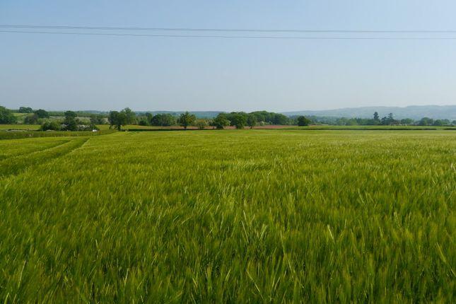 Thumbnail Land for sale in Nr Ledbury, Herefordshire